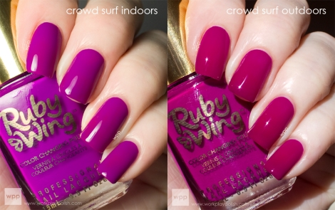 Ruby Wing Crow Surf (Festival Paint Collection)