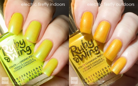 Ruby Wing Electric Firefly (Festival Paint Collection)